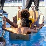 Cardboard Boat Challenge Bermuda, November 18 2016-97