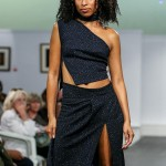 Desiree Riley Bermuda Fashion Collective, November 3 2016-6