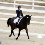FEI World Dressage Challenge Bermuda Nov 12 2016 (11)