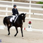FEI World Dressage Challenge Bermuda Nov 12 2016 (12)
