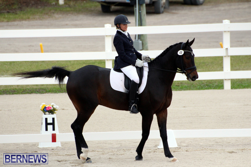 FEI-World-Dressage-Challenge-Bermuda-Nov-12-2016-14