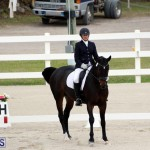 FEI World Dressage Challenge Bermuda Nov 12 2016 (15)
