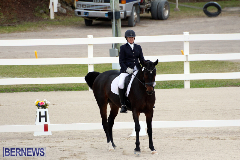FEI-World-Dressage-Challenge-Bermuda-Nov-12-2016-15