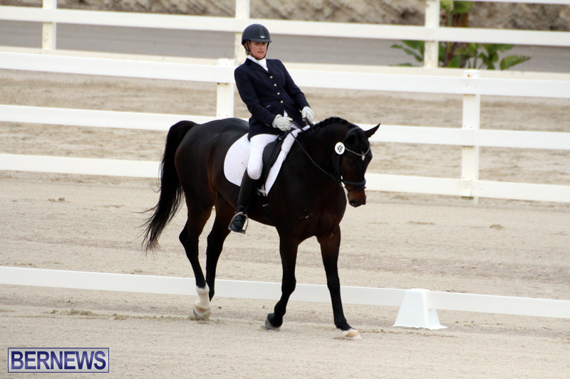 FEI-World-Dressage-Challenge-Bermuda-Nov-12-2016-17