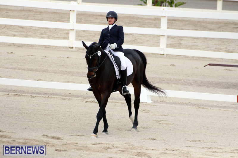 FEI-World-Dressage-Challenge-Bermuda-Nov-12-2016-18