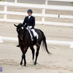 FEI World Dressage Challenge Bermuda Nov 12 2016 (19)