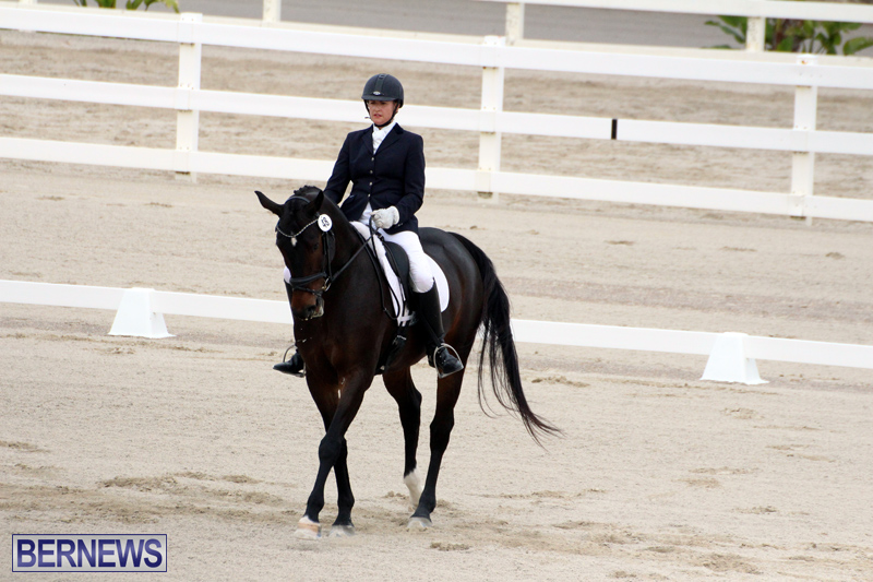 FEI-World-Dressage-Challenge-Bermuda-Nov-12-2016-19