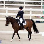 FEI World Dressage Challenge Bermuda Nov 12 2016 (2)