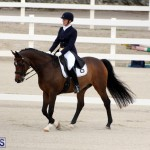FEI World Dressage Challenge Bermuda Nov 12 2016 (3)