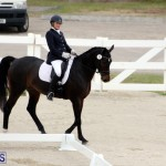FEI World Dressage Challenge Bermuda Nov 12 2016 (5)