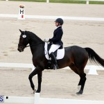 FEI World Dressage Challenge Bermuda Nov 12 2016 (6)
