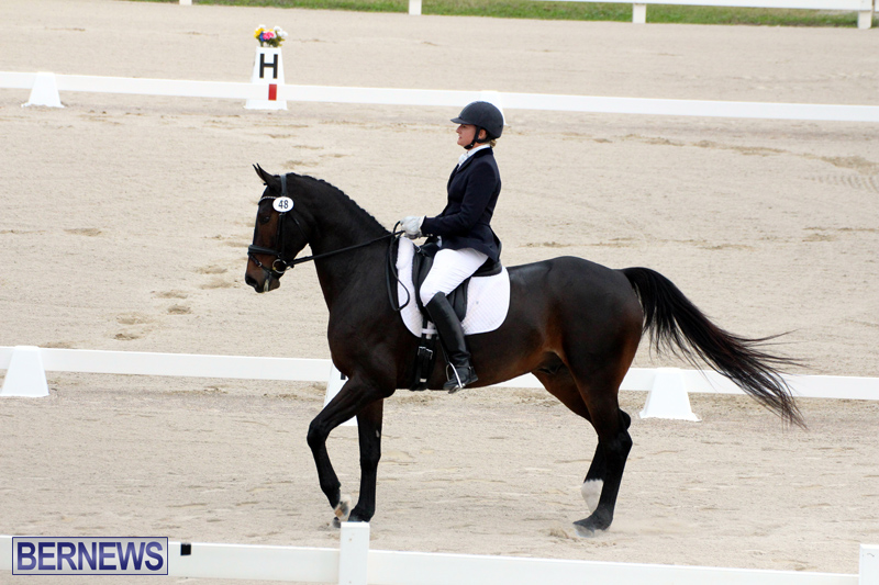 FEI-World-Dressage-Challenge-Bermuda-Nov-12-2016-6