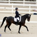 FEI World Dressage Challenge Bermuda Nov 12 2016 (8)
