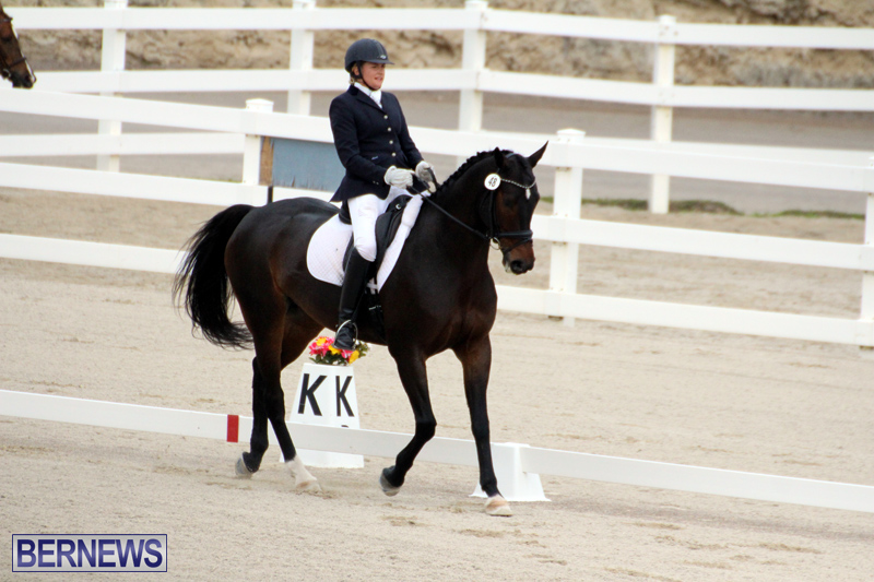 FEI-World-Dressage-Challenge-Bermuda-Nov-12-2016-9