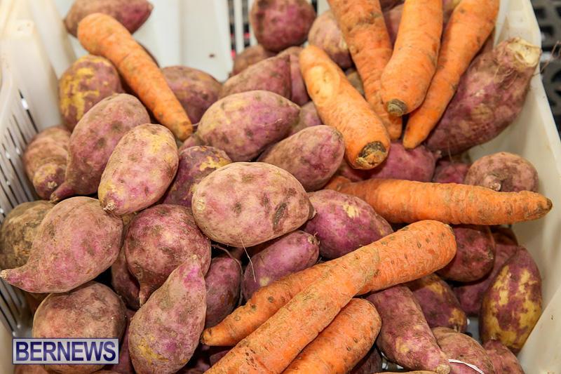 Farmers-Market-Bermuda-November-19-2016-14