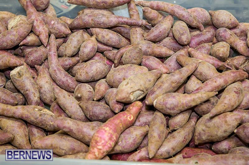 Farmers-Market-Bermuda-November-19-2016-8
