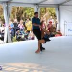 Ice skating Bermuda Nov 26 2016 f (15)