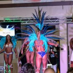 Intense Mas Bermuda Mythica Launch, November 6 2016-9