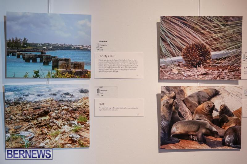 Mindframe-Photovoice-Art-Show-Bermuda-November-18-2016-22