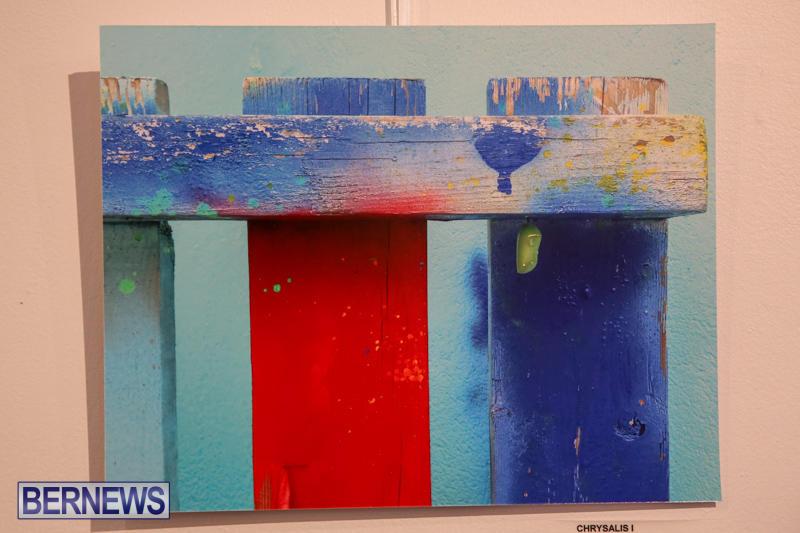 Mindframe-Photovoice-Art-Show-Bermuda-November-18-2016-23