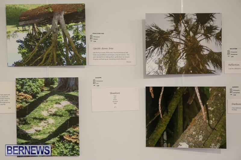 Mindframe-Photovoice-Art-Show-Bermuda-November-18-2016-27