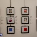 Mindframe Photovoice Art Show Bermuda, November 18 2016-47