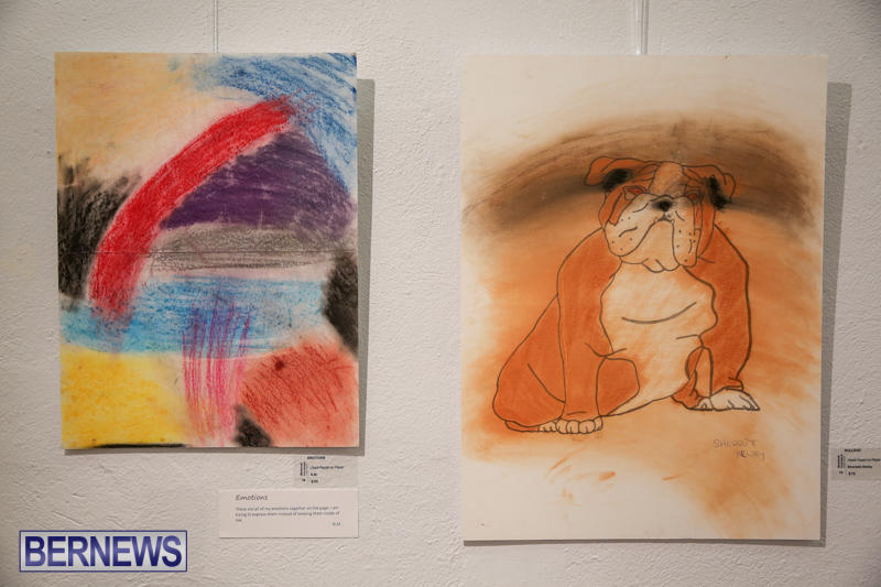 Mindframe-Photovoice-Art-Show-Bermuda-November-18-2016-50