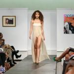 Mo'Nique Stevens Bermuda Fashion Collective, November 3 2016-H (6)