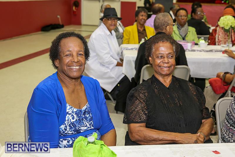 PLP-Constituency-29-Seniors-Tea-Zane-DeSilva-Bermuda-November-20-2016-10