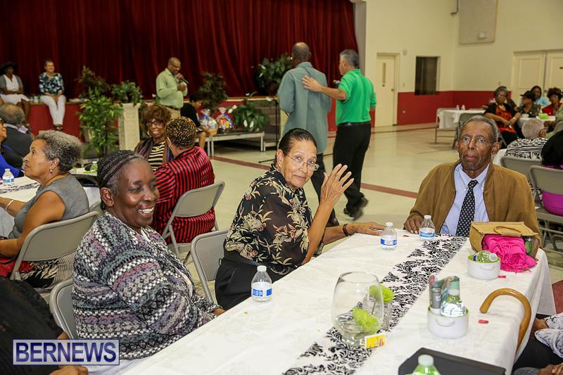 PLP-Constituency-29-Seniors-Tea-Zane-DeSilva-Bermuda-November-20-2016-11
