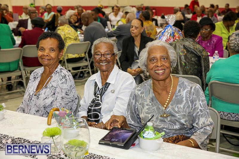 PLP-Constituency-29-Seniors-Tea-Zane-DeSilva-Bermuda-November-20-2016-12