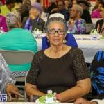 PLP Constituency 29 Seniors Tea Zane DeSilva Bermuda, November 20 2016 (13)