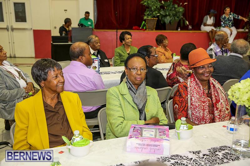 PLP-Constituency-29-Seniors-Tea-Zane-DeSilva-Bermuda-November-20-2016-16