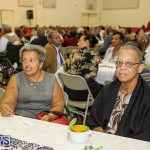 PLP Constituency 29 Seniors Tea Zane DeSilva Bermuda, November 20 2016 (17)
