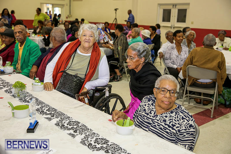 PLP-Constituency-29-Seniors-Tea-Zane-DeSilva-Bermuda-November-20-2016-25