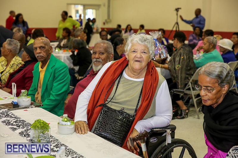 PLP-Constituency-29-Seniors-Tea-Zane-DeSilva-Bermuda-November-20-2016-26