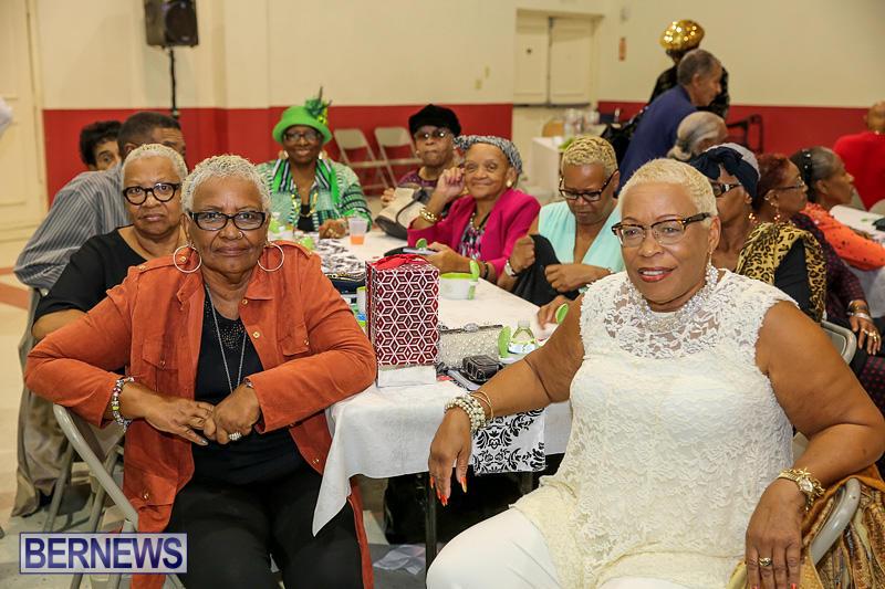 PLP-Constituency-29-Seniors-Tea-Zane-DeSilva-Bermuda-November-20-2016-30