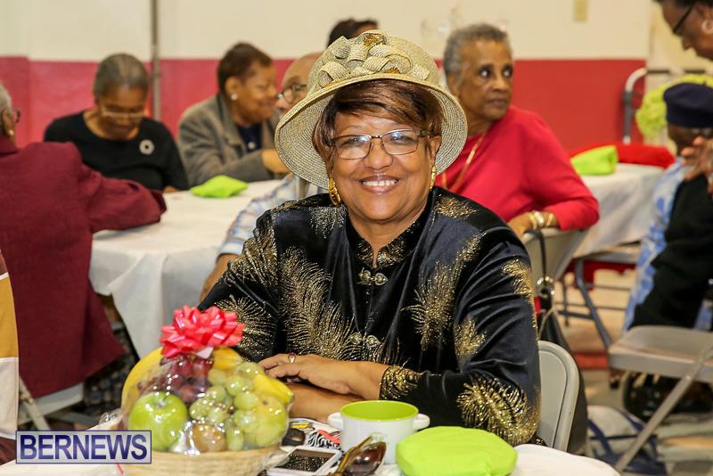 PLP-Constituency-29-Seniors-Tea-Zane-DeSilva-Bermuda-November-20-2016-31