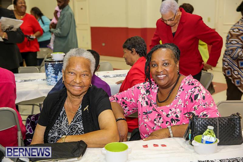 PLP-Constituency-29-Seniors-Tea-Zane-DeSilva-Bermuda-November-20-2016-32
