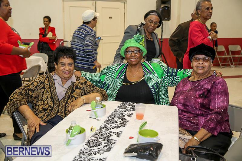 PLP-Constituency-29-Seniors-Tea-Zane-DeSilva-Bermuda-November-20-2016-36