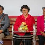 PLP Constituency 29 Seniors Tea Zane DeSilva Bermuda, November 20 2016 (49)