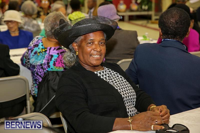 PLP-Constituency-29-Seniors-Tea-Zane-DeSilva-Bermuda-November-20-2016-6