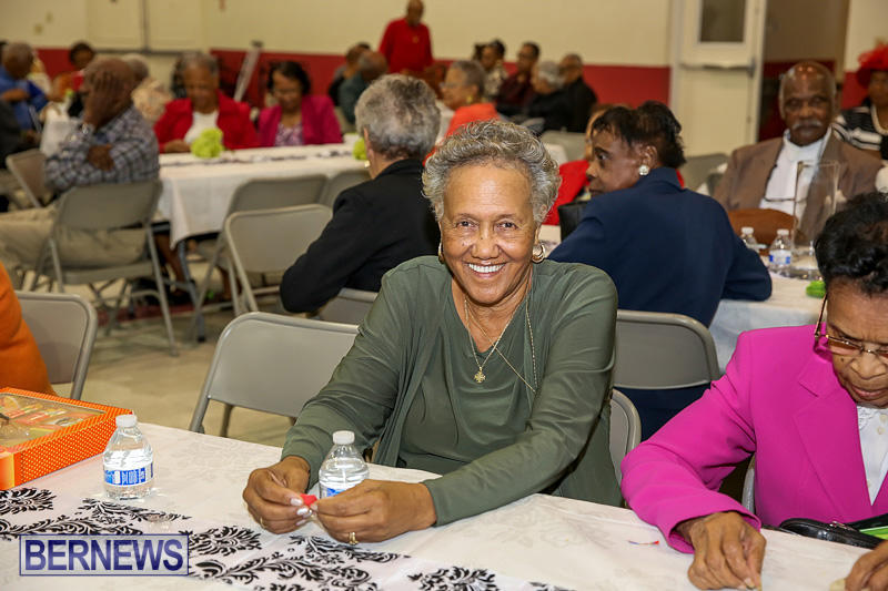 PLP-Constituency-29-Seniors-Tea-Zane-DeSilva-Bermuda-November-20-2016-7