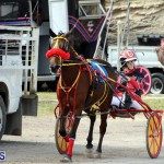 Remembrance Day Harness Racing Bermuda Nov 11 2016 (10)