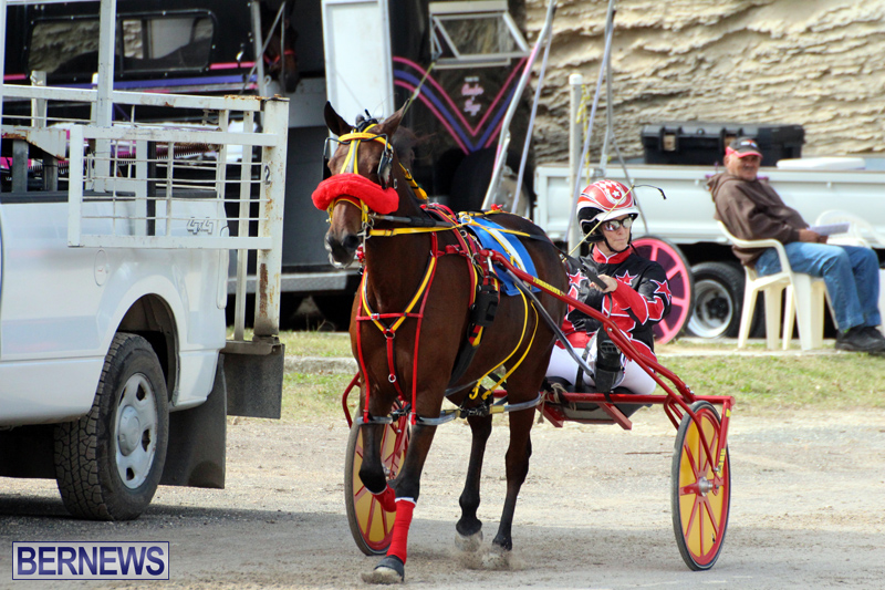 Remembrance-Day-Harness-Racing-Bermuda-Nov-11-2016-10