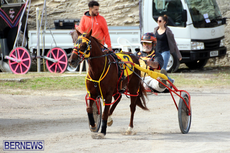 Remembrance-Day-Harness-Racing-Bermuda-Nov-11-2016-11