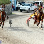 Remembrance Day Harness Racing Bermuda Nov 11 2016 (12)
