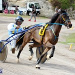 Remembrance Day Harness Racing Bermuda Nov 11 2016 (13)