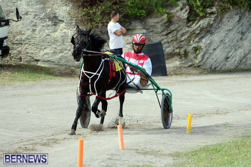 Remembrance-Day-Harness-Racing-Bermuda-Nov-11-2016-14