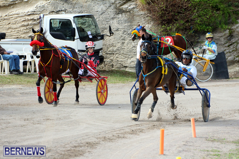 Remembrance-Day-Harness-Racing-Bermuda-Nov-11-2016-15